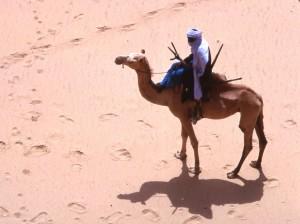 photographie desert