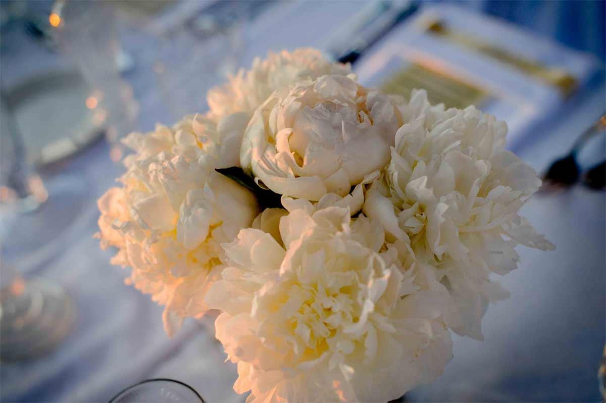 photographie-de-mariage-provence-(37-sur-46)